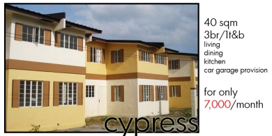 01Cypress